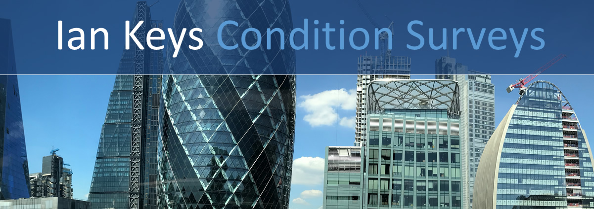 Ian Keys Condition Surveys Logo